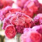A-Pop-of-Pink24