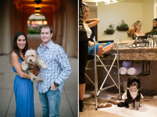 Intertwined Events How To Incorporate Your Dog Into Wedding