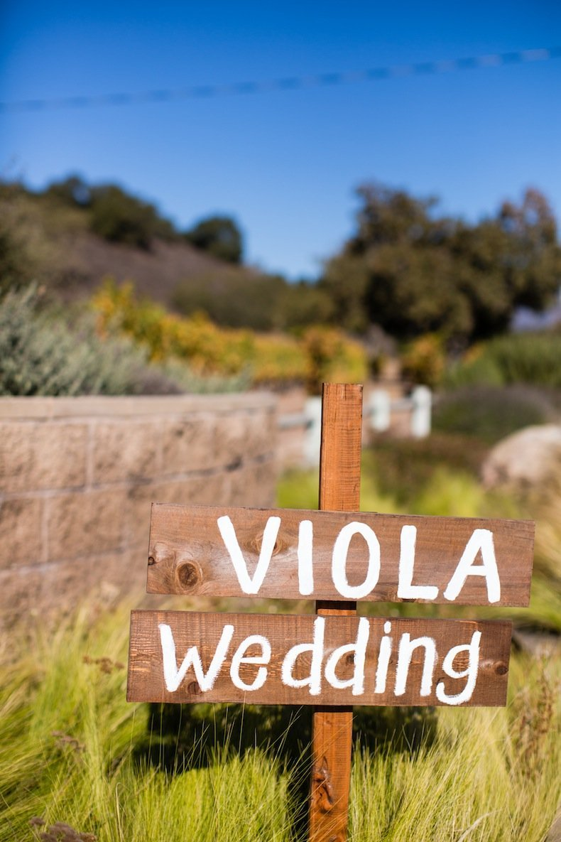 Intertwined Events_Vows and Vines 1